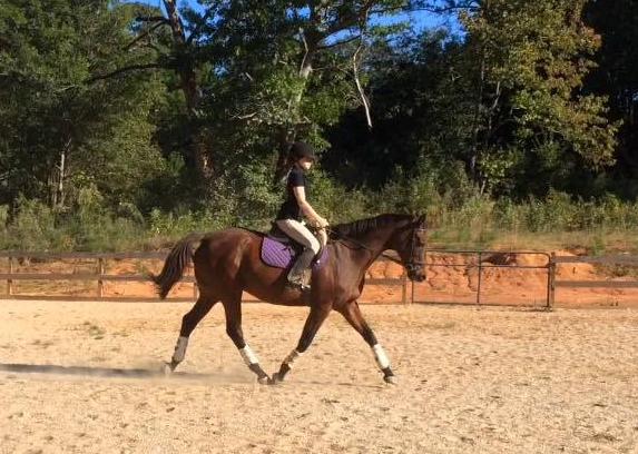 Training ride by Assistant Lauren
